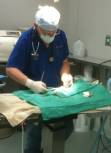 surgery pic for website w LA King-cropped